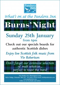 BurnsNight15