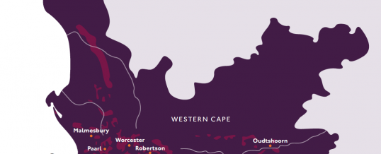 Stunning South African wines…