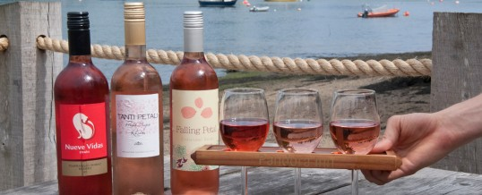 Wine flights of what you fancy!